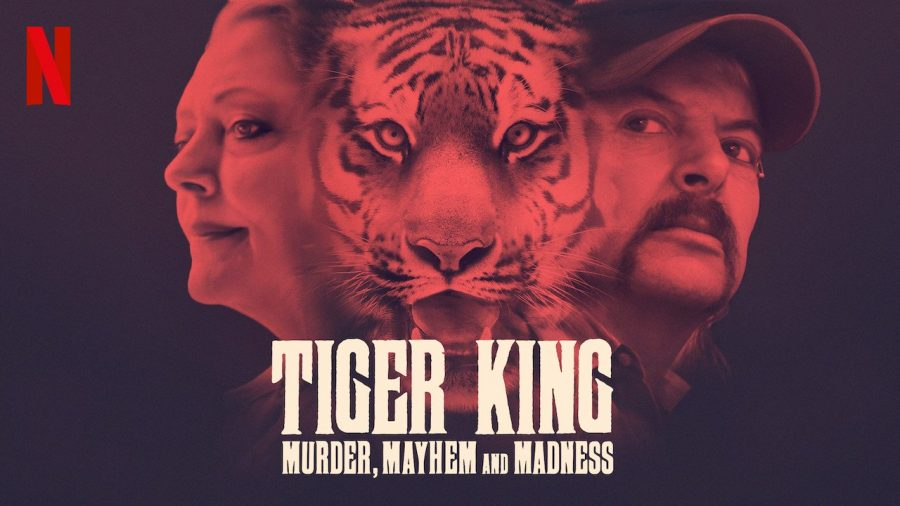 Tiger King: The Joe Exotic Pandemonium